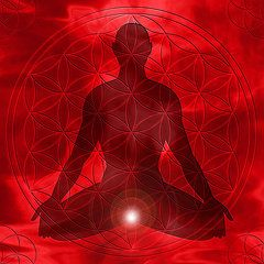 Root Chakra, is your Functional or Dysfunctional?