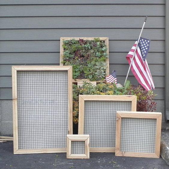 Succulent vertical living wall art kit 12 inch by for Vertical wall garden kits