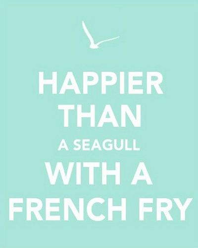 Happier than a Seagull with a French Fry: