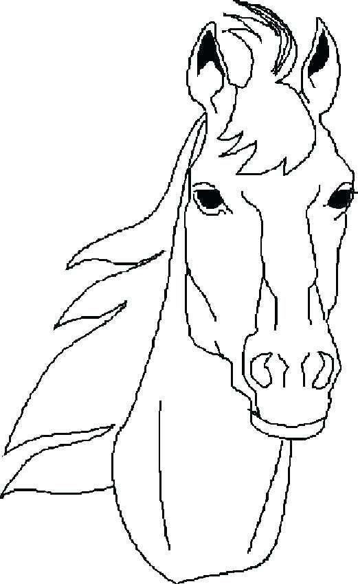 Horse Face Coloring Page Horse Coloring Pics Amazing Horse Coloring Horse Coloring Pages Horse Coloring Horse Drawings