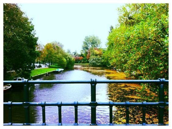 Canal in autumn - guide to Oud-Zuid and De Pijp - Awesome Amsterdam