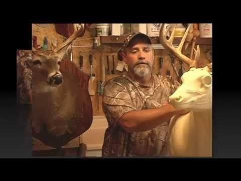 """Roadkill Art """"Webisode 3"""" Taxidermy Deer Art - YouTube"""