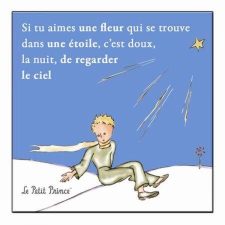 Amis du Petit Prince vous n'avez pas été oubliés : découvrez les magnets ...