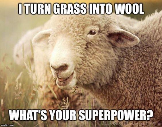When cellulose = protein                                                       …: