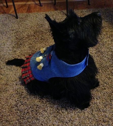 Lucy in her new kilt