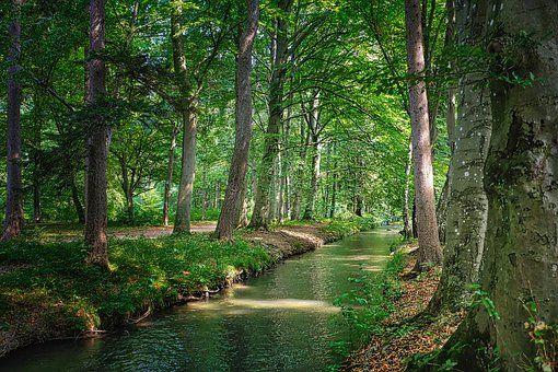 10 000 Free Landscape Rivers River Images Pixabay Landscaping Images Landscape River