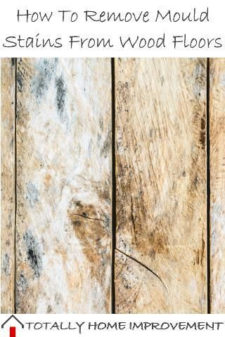 How To Remove Mould Stains From Wood Floors Remove Mold Stains