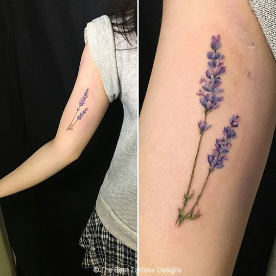 girls biceps lavender tattoo tumblr: