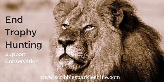 Let's put an end to trophy hunting