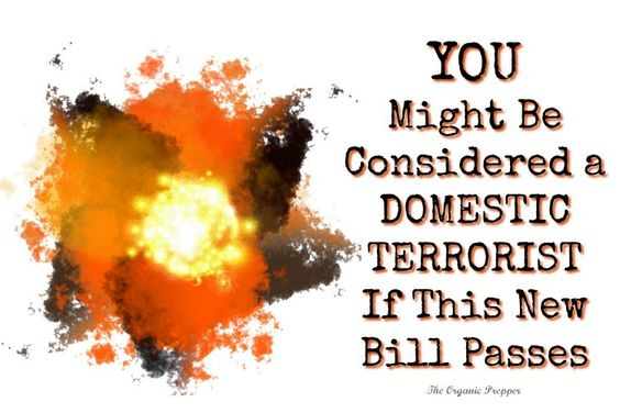 YOU Might Be Considered a Domestic Terrorist If This New Bill Passes