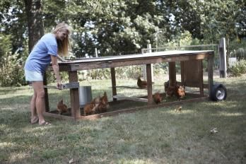 Pinterest the world s catalog of ideas for Big chicken tractor