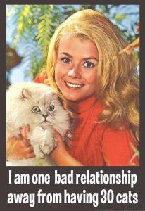 One Bad Relationship Away From Having 30 Cats Funny Poster haha