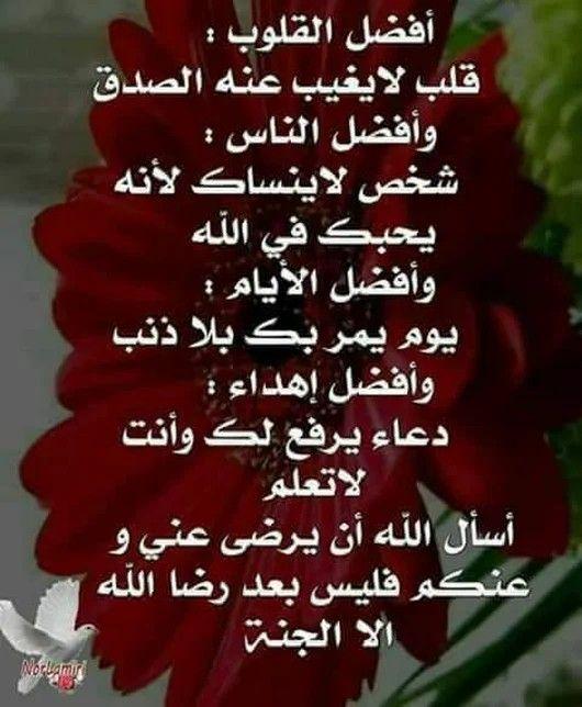 Pin By Rose Flower On كلمات قيمة Wisdom Pray Peace