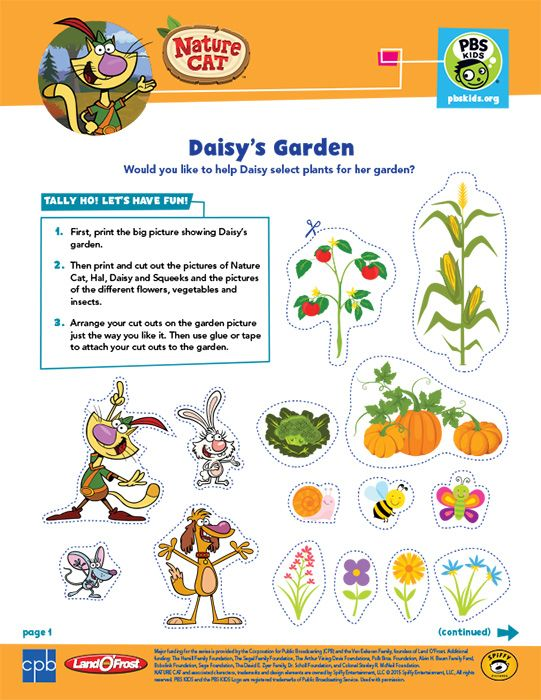 Nature Cat Pbs Kids Coloring For Kids Pbs Kids Coloring Pages For Kids