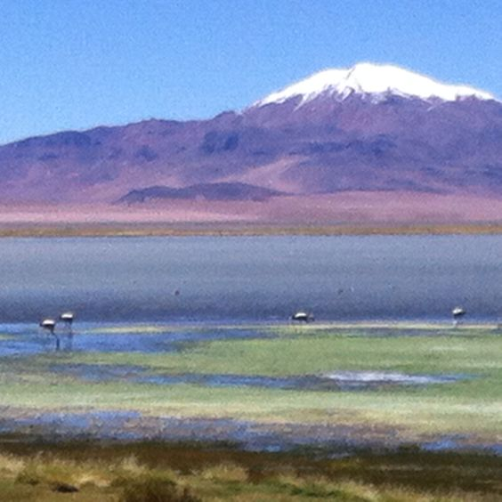Deserto Atacama / Chile