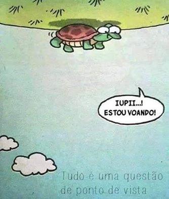 #ótica