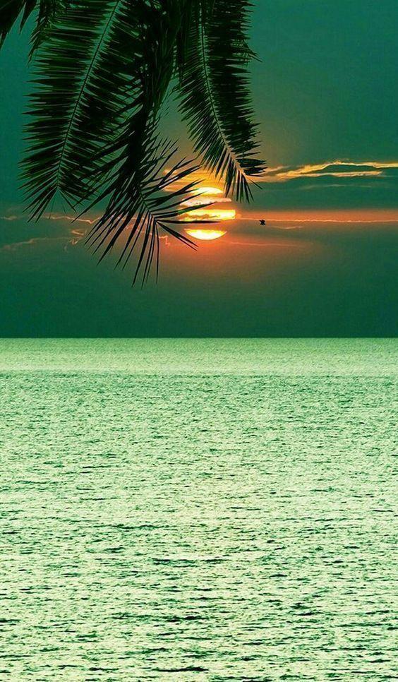 Sea Ocean Beach Beautiful Landscapes Landscape Photography Beautiful Nature