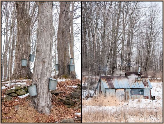 west running brook robert frost essay