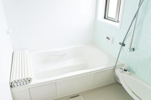 どんなお風呂場にも必ずある エプロン は掃除しないと超不潔 一体何のこと 2020 お風呂場 どんより 家事