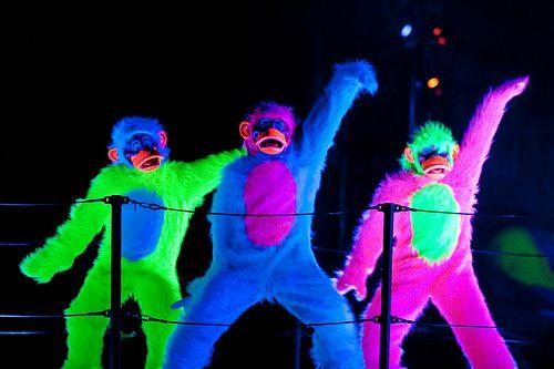 I'm pretty sure this would be my dream Disney job...a Fantasmic monkey.