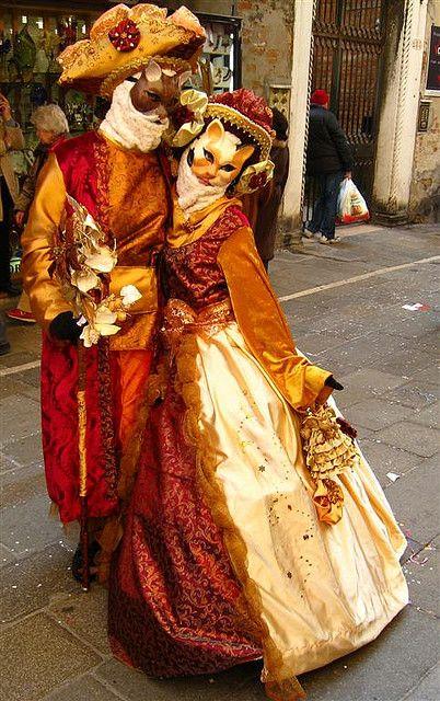 Venice - Gatto: