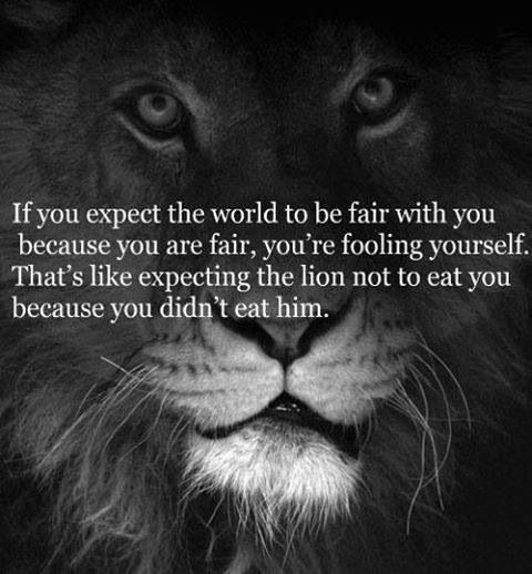 If you expect the world to be fair with you because you are fair, you're fooling yourself. That's like expecting the lion not to eat you because you didn't eat him.