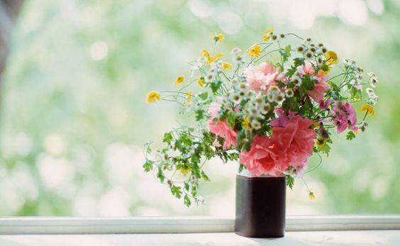 decoracao-com-plantas