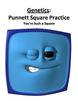 Punnett square homework help