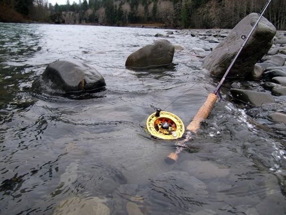 Fishing stars and fishing tips on pinterest for Fly fishing rods for beginners