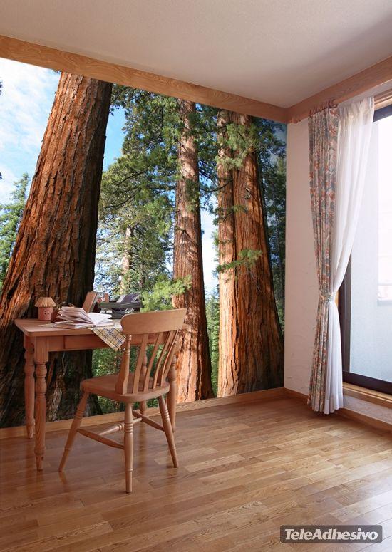 Fotomurales bosque  a tamaño de pared y con distintos materiales