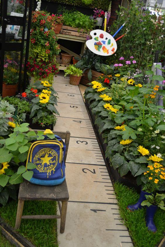 Ruler footpath lined with sunflowers ideal for kids garden or a school garden