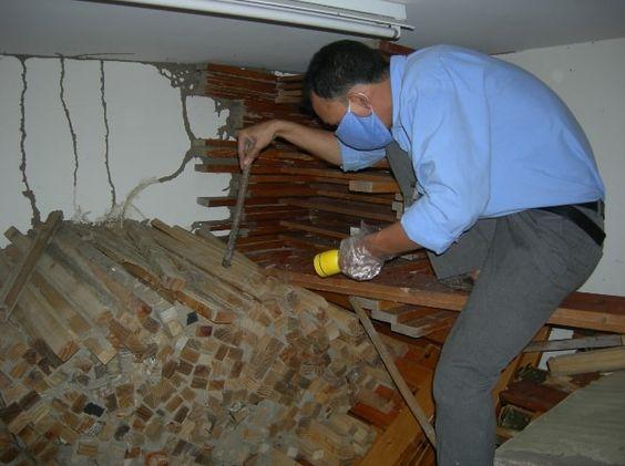 Hướng dẫn cách khảo sát môi trong nhà