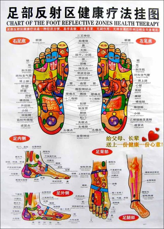 CHINESE-ENGLISH CHART FOOT REFLECTIVE ZONES HEALTH THERAPY ...
