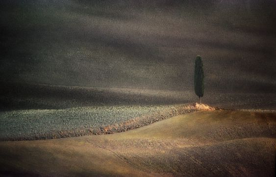 Photographie, film 24x36, 35mm dans Nature, Paysage, Nikon FM2 - Image #113962