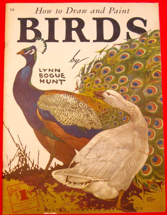 Vintage Walter Foster : Lynn Bogue Hunt - How to Draw and Paint Birds:
