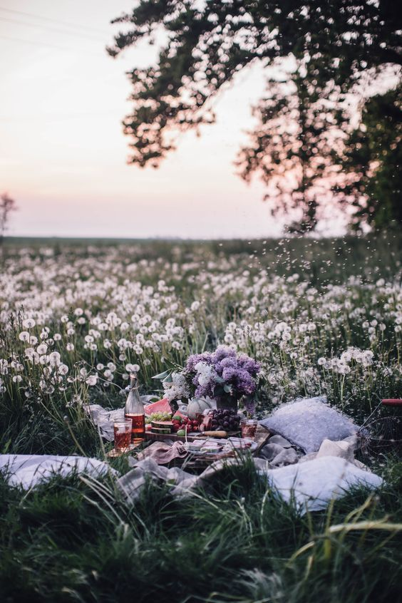 The most magical summer picnic in a field of dandelions with dreamy evening light and delicious matcha-coconut-berry popsicles.