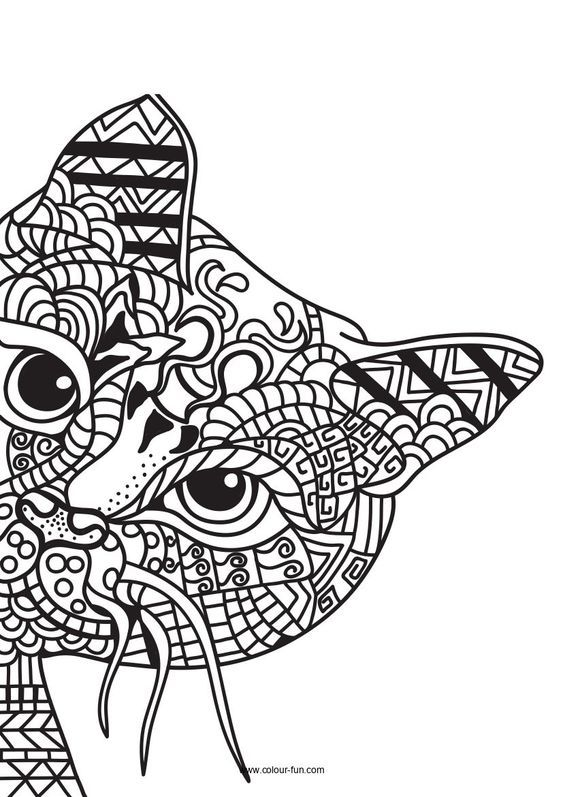 Kitten Coloring Pages Pdf Kittens Coloring Cat Coloring Page Cool Coloring Pages