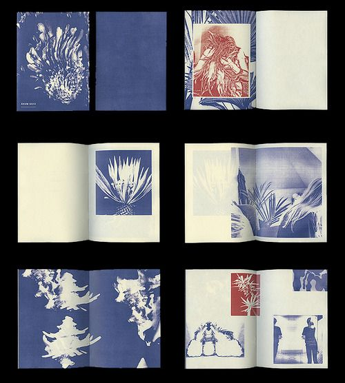 Beautiful zine from Swedish artist Fredrik Åkum.: