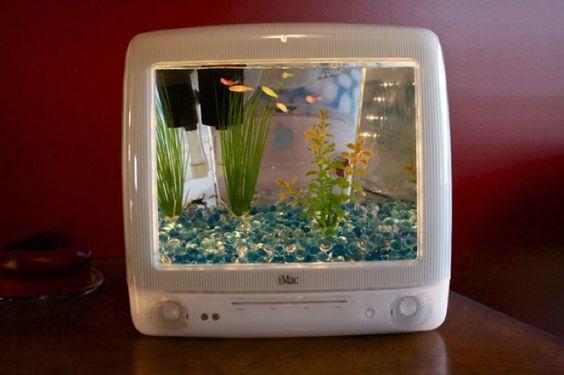 Aquarium Mac