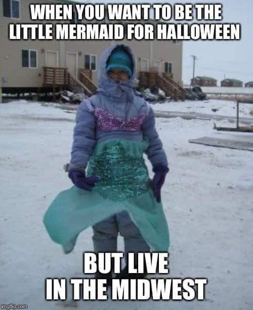 Midwest Living Halloween Funny Clean Memes Funny