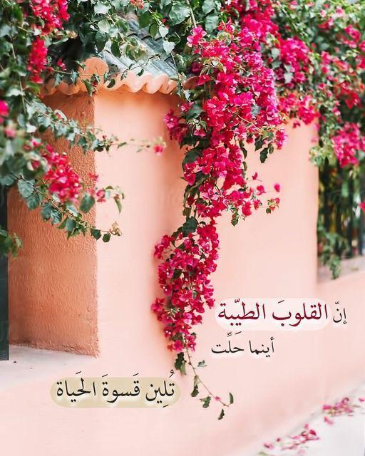 ان القلوب الطيبة أينما حلت تلين قسوه الحياة Coffee And Books Floral Wreath Wreaths