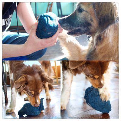 D.I.Y. Jouet pour chien ultra résistant