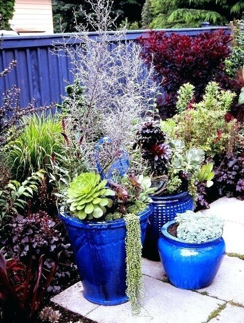 Blue Flower Pot Big Shiny Blue Pot Container Garden With Blue Garden Garden Pots Side Garden