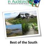 Auckland Volcano Walks | Short Walks In Auckland