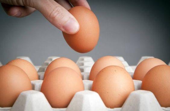 Una de las principales fuentes de proteínas que debería incluirse en todas las dietas, ya sea que quieras quemar grasas, mantener tu peso o formar más masa muscular magra, es el huevo. Los huevos son un eficiente fuente de proteínas, y son más económicos que otras fuentes en el mercado, además poseen gran versatilidad, por …