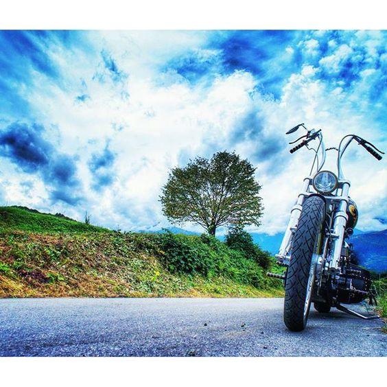 【fxstc_93_ryujin】さんのInstagramをピンしています。 《白馬野平の一本桜! @flsts1998さん案内により訪問 スゲーよThank You! 白馬三山の残雪と桜を きっと見にくるからなー!  #fxstc #harleydavidson #ハーレーダビッドソン #ソフテイル #ハーレーエボ #custombike #chopper #motorcycle #カスタムバイク #ツーリング #青空 #バイクのある風景 #ミラーレス一眼 #bj_mycar #写真好きな人と繋がりたい  #白馬 #野平  一本#桜 の木》