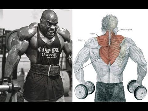 Trap Workout Massive 5 Best Dumbells Exericises For Bigger Traps Youtube In 2021 Best Trap Exercises Traps Workout Shoulder Workout Routine