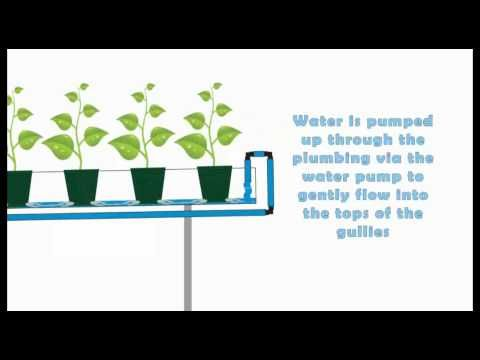 Hydroponic - NFT systems basic run down