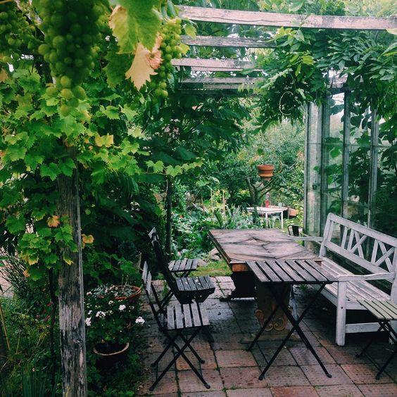 Ekologiskt och blommigt jordbruk med trädgårdskök & gårdsbutik                                 • Allt ekologiskt sedan 1996 •