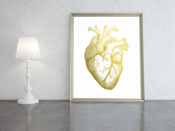 Gold foiled anatomical heart ideal office print by PrintsOfHeart, £4.50